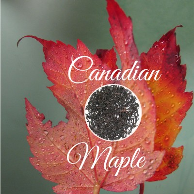 Canadian Maple Black Tea